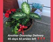 RDM 5 day Prize